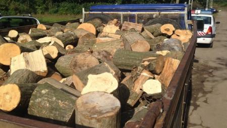 O autoutilitară şi lemnul transportat ilegal – confiscate de poliţiştii din Borșa