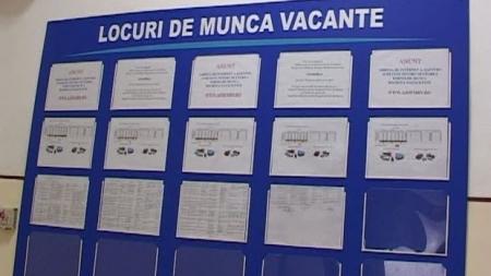 Aproape 430 de locuri de muncă oferite prin AJOFM Maramureș