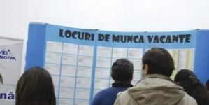 416 locuri de muncă oferite prin AJOFM Maramureș