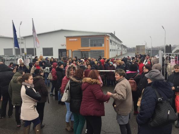 Grevă la Weidmuller Tăuții Măgherăuș (VIDEO și GALERIE FOTO)
