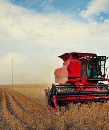 Fermierii își pot asigura culturile și animalele prin PNDR 2020
