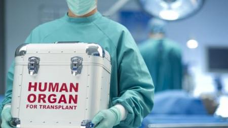 Alți șase bolnavi  au primit șansa la o nouă viață, datorită organelor prelevate la Spitalul băimărean