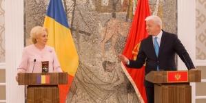 Export ilegal de cacao pe filiera guvernului român (VIDEO)