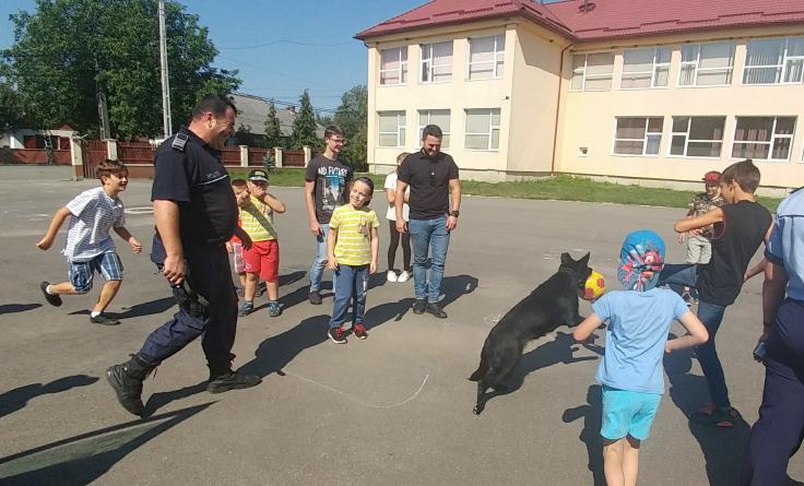 Distracție cu câini în tabără