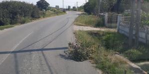 Trendul bio-eco se impune tot mai mult în circulația rutieră