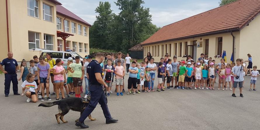 Câinii poliţişti Teba şi Vis –  demonstrații de… vis la Dumbrăvița