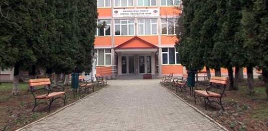 În Baia Mare, admitere la  Arte Plastice, specializarea pictură
