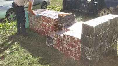 Capturi începând de la 20 până la 14.400 pachete cu țigări de contrabandă