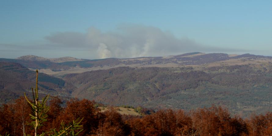 80 de hectare de vegetație alpină uscată au ars pe Vârful Țiganu (GALERIE FOTO)