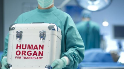Spitalul băimărean – lider național la donările și prelevările de organe