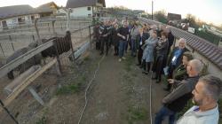 Lanțul alimentar județean, de la produsele tradiționale la fermele de struți (GALERIE FOTO)