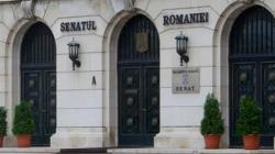 """O maramureșeancă face parte din Grupul Parlamentar """"UNIREA"""", nou înființat în Senat"""