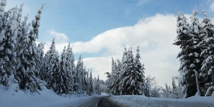 Risc de avalanșe în Munții Maramureșului și Munții Gutâi