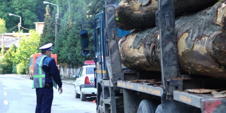 15 lucrători silvici cercetați în dosare penale legate de materialul lemnos