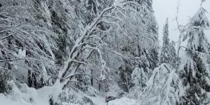 Două drumuri închise și doi munți cu pericol de avalanșe