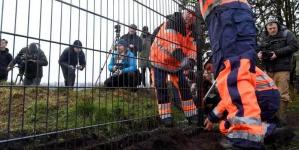 Danemarca ne dă o lecție despre cum trebuie luptat cu pesta porcină africană