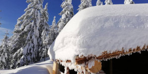 Vreme cu temperaturi – și ninsori – apropiate de normalul perioadei