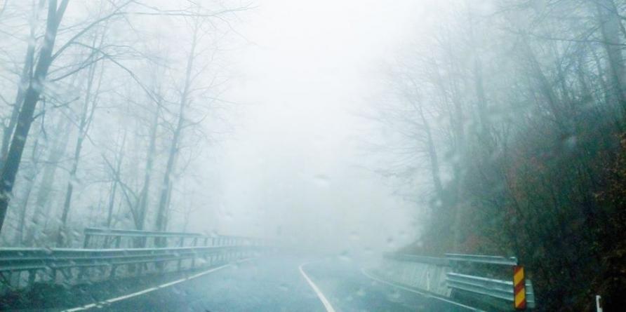 Ceață în Pasurile Gutâi și Prislop, la Sighet și Vișeu de Sus