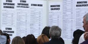448 de locuri de muncă oferite prin AJOFM Maramureș