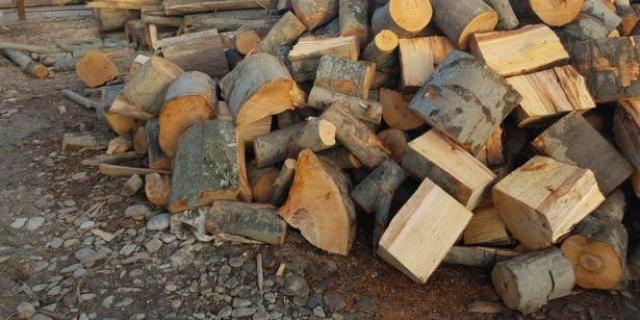 O femeie s-a ales cu dosar penal după ce i s-au furat lemne