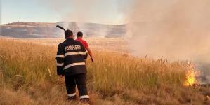 Weekend de foc în Maramureș: au ars 26,5 hectare de vegetație uscată