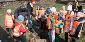 """Prichindeii de la Școala """"George Coșbuc"""" au plantat pomi la Muzeul Satului (GALERIE FOTO)"""