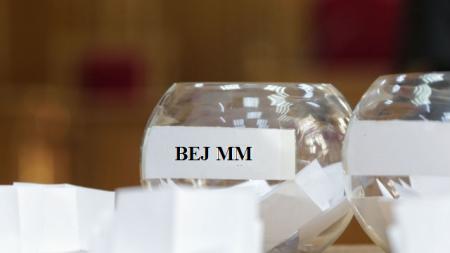 Judecătorii desemnați  pentru  BEJ Maramureș