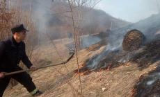 250 de hectare de vegetație uscată au ars în județ, în ultima lună