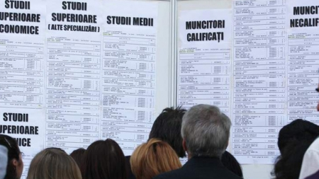 Ce posturi mai sunt disponibile pe piața muncii din județ