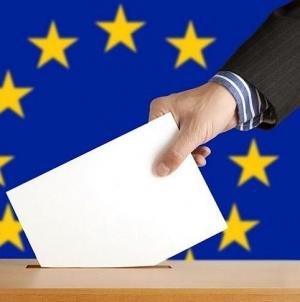 Detalii privind alegerile europarlamentare și referendumul