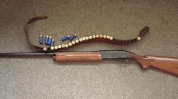 La Seini, arme din Austria pentru care nu exista autorizație de România