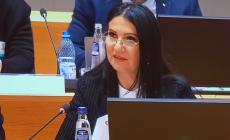 Ministrul Sorina Pintea, blocată câteva ore la Otopeni