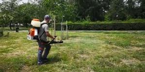 Campanie de dezinsecție pentru combaterea țânțarilor în Baia Mare