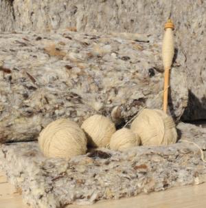 Ajutorul de stat pentru lâna comercializată crește până la 2 lei/kg
