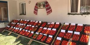Festivalul porodicilor, la Mocira