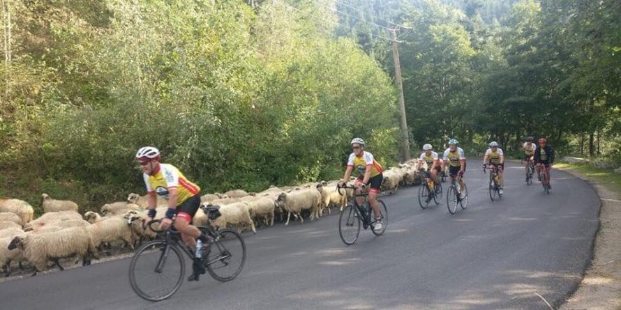 Azi ajung în Baia Mare cicliştii belgieni care militează pentru o rețea de îngrijire la domiciliu a vârstnicilor (GALERIE FOTO)