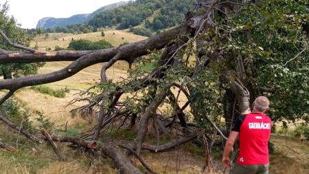 Salvamontiștii salvează și traseele turistice care au suferit… accidentări