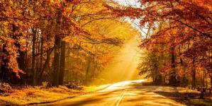 Vremea în ultima decadă a lunii noiembrie