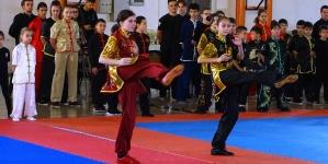 Cupa României la Wing Chun. Băimărenii au câștigat 105 medalii în prezența ambasadorului Chinei în România (GALERIE FOTO)