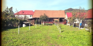Vand casa cu teren – la sosea, situata la Tauti de Sus – la intrare dinspre Baia Mare