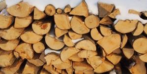 Căvnicarii pot cere lemne de foc de la primărie