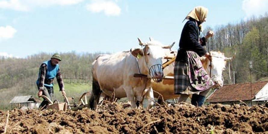"""PS Iustin: """"Să ne reîntoarcem la gândirea înțeleaptă a țăranilor noștri care își produceau pentru lunile de iarnă hrana necesară de origine vegetală și animală"""""""