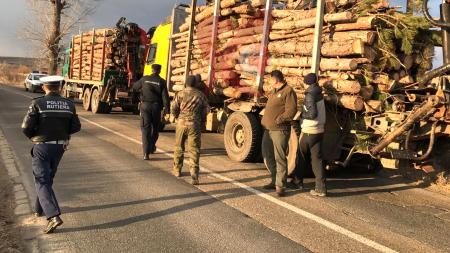 Important: Paznicii pădurilor vor fi însoțiți de personalul MAI în controalele pe linie silvică