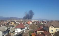 Foc: Incendiu violent în zona Cuprom Baia Mare; Iarăși incendii de vegetație uscată în județ (FOTO)