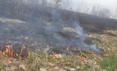 """Apelul administrațiilor locale din Maramureș: """"Nu mai dați foc miriștilor! Focul se poate extinde foarte repede!"""""""
